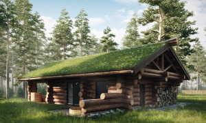 Проект рубленой бани: интересные варианты оформления постройки