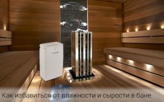 Как решить проблему повышенной влажности в бане?