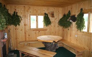 Антисептик для бани для обработки древесины – реальная защита сооружения от любых неприятностей